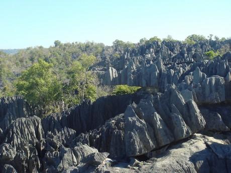 2538573648 9ca3199255 460x345 El bosque de piedra de Tsingy en Madagascar