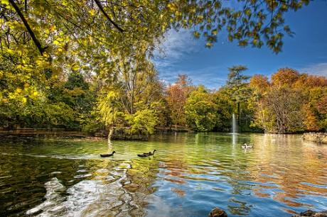 4117129914 3a951b050b 460x306 El Parque del Campo Grande de Valladolid