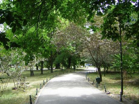 800px Cismigiu Garden Bucharest 8 460x345 Cismigiu, el parque más antiguo de Bucarest