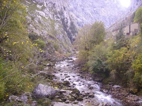 800px Garganta del Cares 460x345 La ruta del Cares por los Picos de Europa