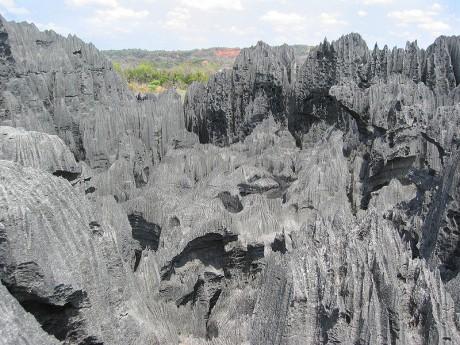 800px Tsingy de Bemaraha Strict Nature Reserve 460x345 El bosque de piedra de Tsingy en Madagascar