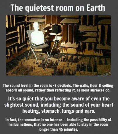 Cámara anecoica 403x460 La habitación del silencio