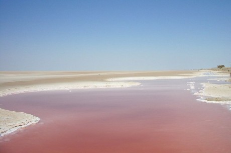 Chott El Djerid 460x304 Chotts, los lagos del infierno
