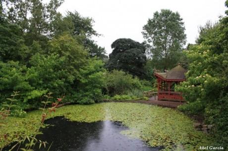 Edimburgo Jardín Botánico 460x306 El hermoso y tranquilo Jardín Botánico de Edimburgo