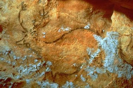 Gruta Cosquer 460x305 La gruta Cosquer, un maravilloso descubrimiento bajo el mar
