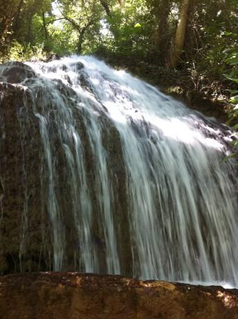 IMG 2259 343x460 Ruta por el Monasterio de Piedra