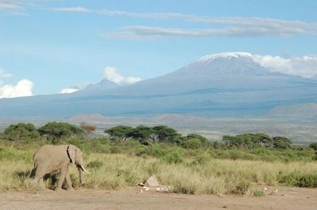 Kilimanjaro 460x305 El místico Kilimanjaro
