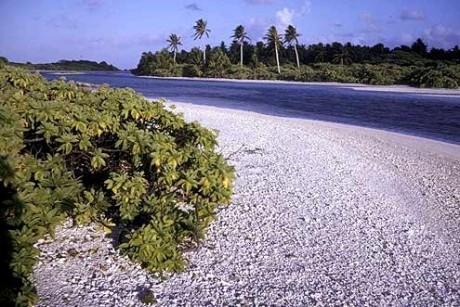 Kiribati 460x307 Micronesia, perlas en el mar