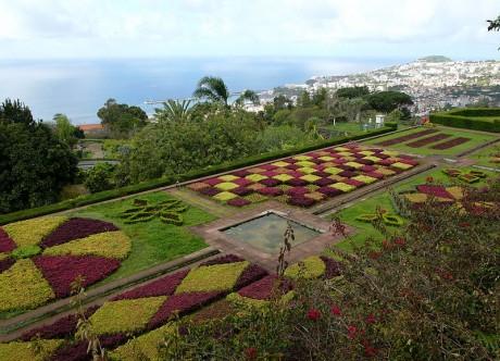 Madeira Jardín Botánico 460x332 Madeira, un trocito de Europa en el Atlántico