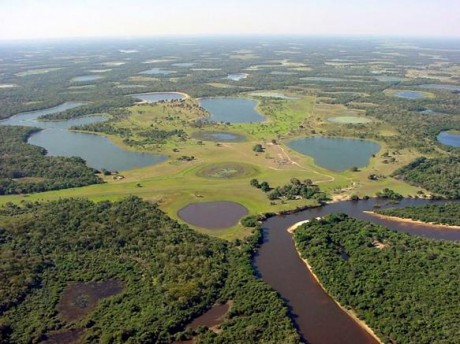 Pantanal 460x344 El Gran Pantanal, el humedal más grande del mundo