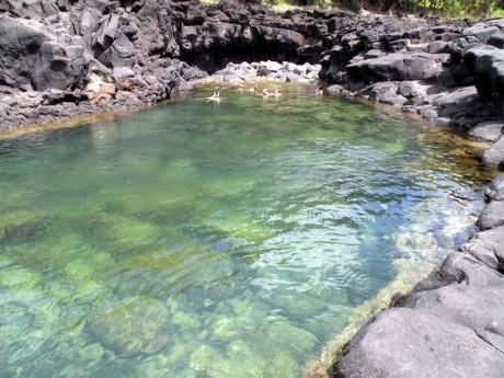 Queens Bath Kauai Hawaii 460x345 Queens Bath, una piscina natural al lado del mar