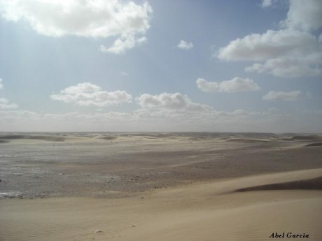 Sahara 460x344 Sahara, el más grande de los desiertos