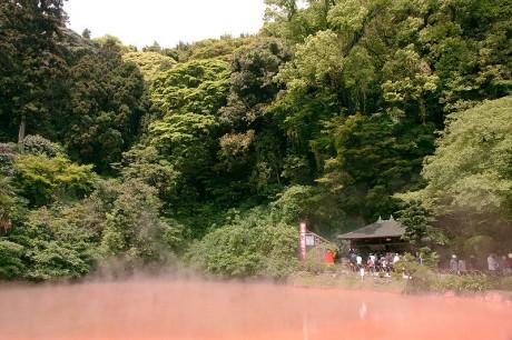 Termas de Beppu Chinoike Jigoku 460x306 Las termas del infierno