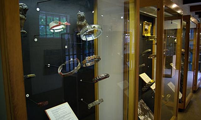 The Dog Collar Museum El  museo de los collares de perro