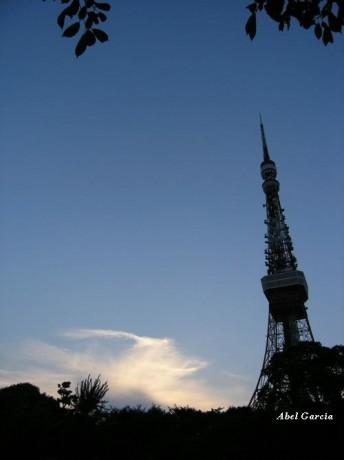 Torre de Tokyo 344x460 Tokyo desde el cielo