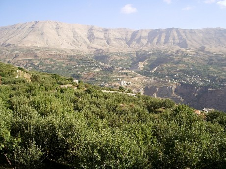 Valle de Kadisha 460x345 El Valle de Kadisha y el Bosque de los Cedros de Dios
