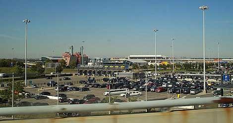 aeropuerto jfk nueva york Unas tortugas paralizan el aeropuerto JFK de Nueva York