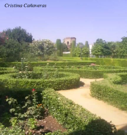 alcazar1 431x460 El histórico Alcázar de los Reyes Cristianos