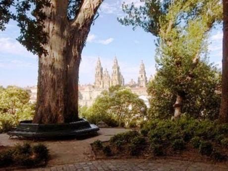 arbol de los enamorados Santiago 560x421 460x345 El parque de la Alameda y su árbol del Amor