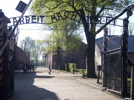 auschwitz1 460x345 Conocer Auschwitz en la actualidad