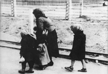 auschwitz2 460x314 Conocer Auschwitz en la actualidad