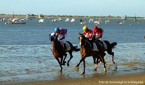 carreras caballos playa sanlucar Carreras de caballos en Sanlucar, Cádiz