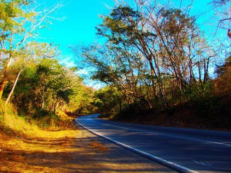 carretera 460x345 Evita los atropellos