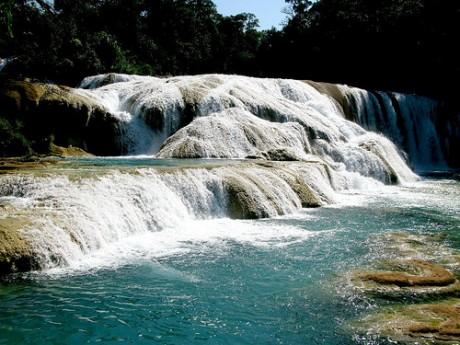 cascadas 460x345 Las Cataratas de Agua Azul, un paraíso turquesa en Chiapas