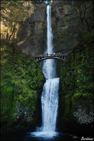 cascadas1 308x460 Las Cataratas Multnomah y su puente
