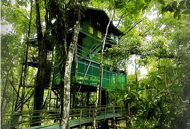 hotel1 Dormir en el Amazonas