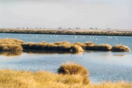 huelva 460x306 Descubrir la Huelva desconocida