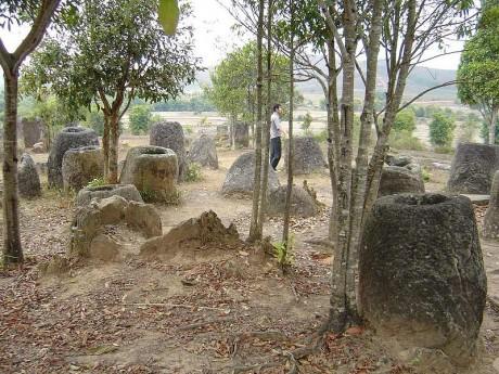 jarras1 460x345 Llanura de las Jarras en Laos
