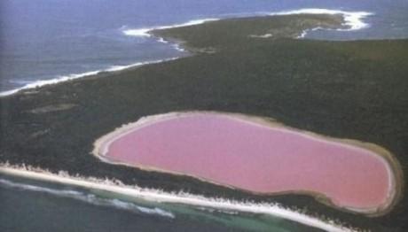 lago1 460x262 Lago Hillier, acumulación de agua rosa