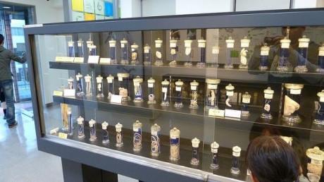 museo 460x258 El único museo de parásitos del mundo