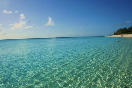 playa2 460x306 El paraíso natural de Aldabra
