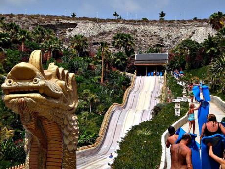 siam park 460x345 Siam Park, parque acuático por excelencia