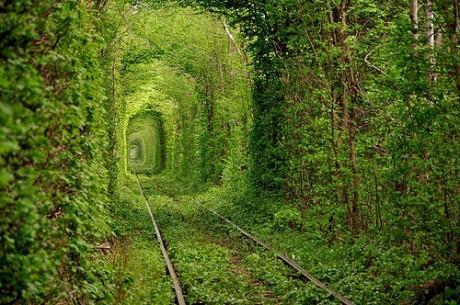 tunl 460x305 El túnel del amor de Ucrania